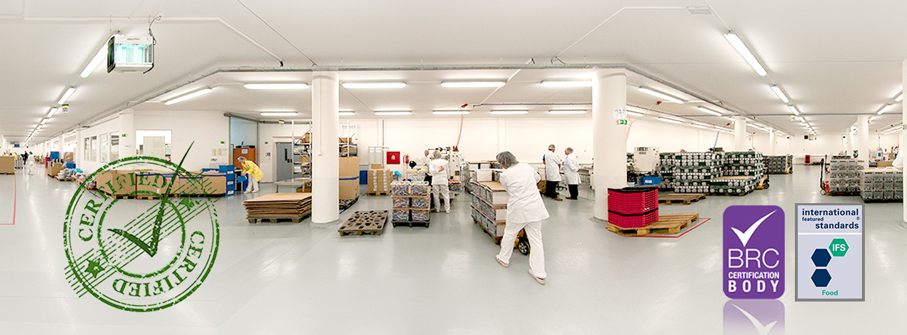 Lion Products Production